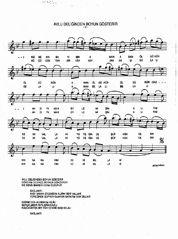 Avlu Deliğinden Boyun Gösterir Nota 2