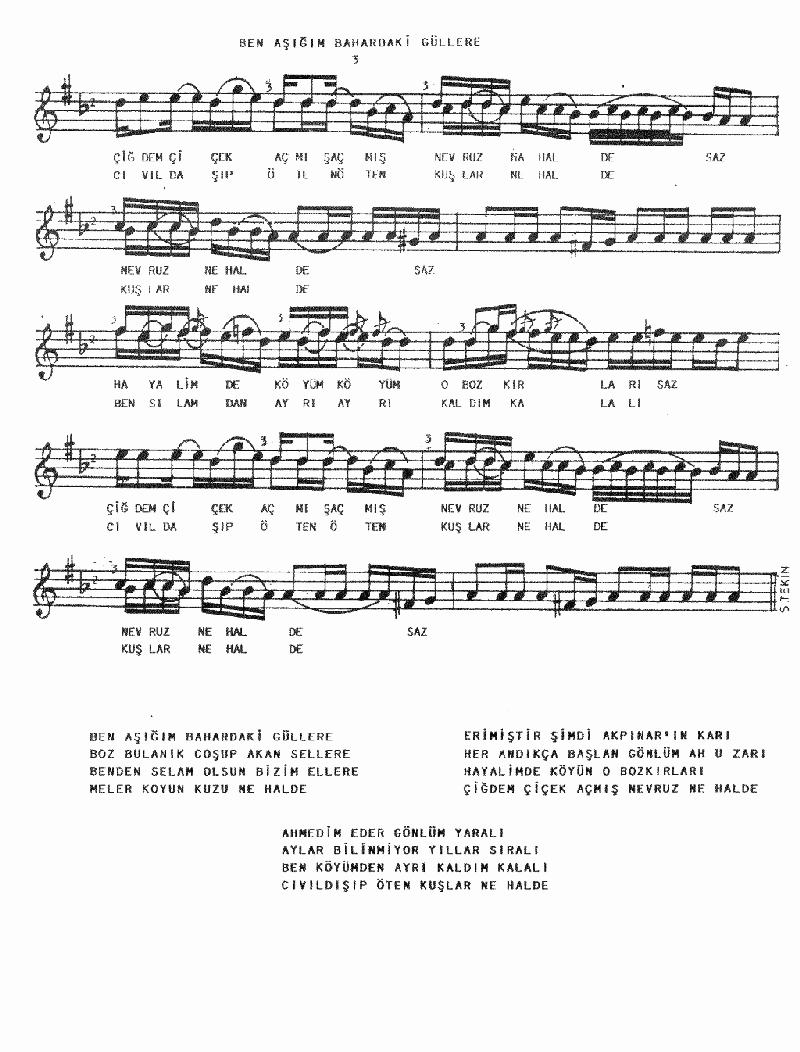 Ben Aşığım Bahardaki Güllere Nota 3