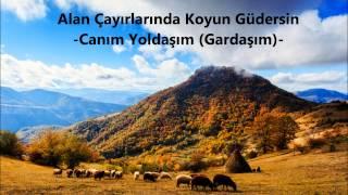 Alan Çayırlarında Koyun Güdersin (You Herd Sheep in Pastures) - Rüstem Avcı