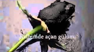 Ergün Efe-Dağlarına Dargınım