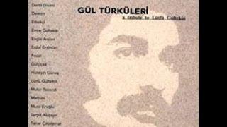 Serpil Alaçayır - Acılar İçimde Kaldı [ Gül Türküleri © 2003 Kalan Müzik ]