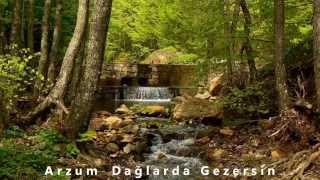 Arzum Dağlarda Gezersin - Hüseyin Yaltırık