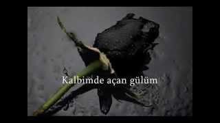 Ergün Efe - Dağlarına Dargınım