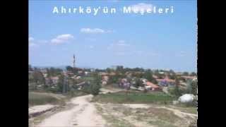 Ahırköy'ün Meşeleri - Havva Karakaş
